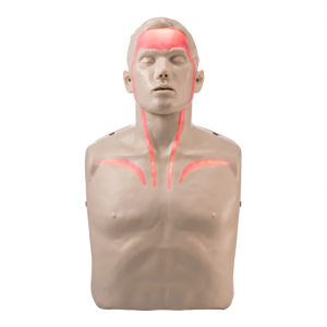 Brayden CPR Manikin (LED red blood circulation)