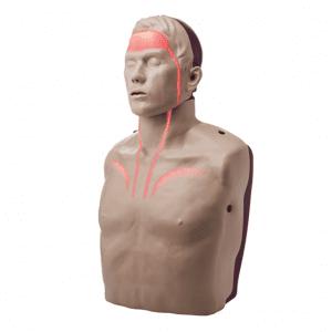 Brayden PRO Manikin (bluetooth to App, red blood circulation)